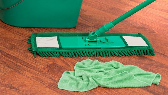 Keep your home germ-free and sanitized with reliable housekeeping services | Bissworld Securitus